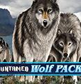 Untamed Wolf Pack в казино Вулкан